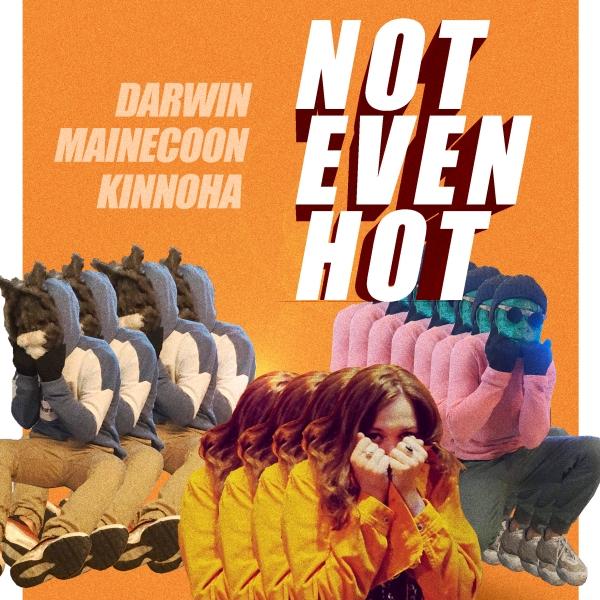 not even hot kinnoha